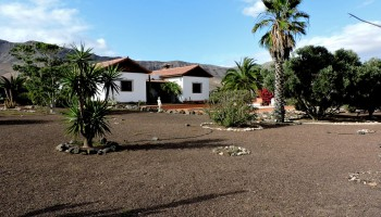 Garden view - Villa with pool for sale in Casillas del Angel Fuerteventura