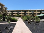 Apartment in Costa de Antigua, Fuerteventura - Gardens