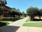 Apartment for sale in Fuerteventura - Gardens